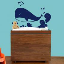 Kit whale