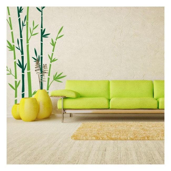 Decorative vinyl walls bamboo