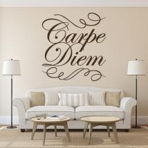 Decorative vinyl Carpe Diem