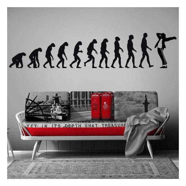 Decorative vinyl evolution Jackson