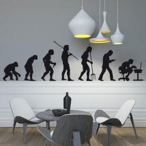 Evolution decorative vinyl English 1169