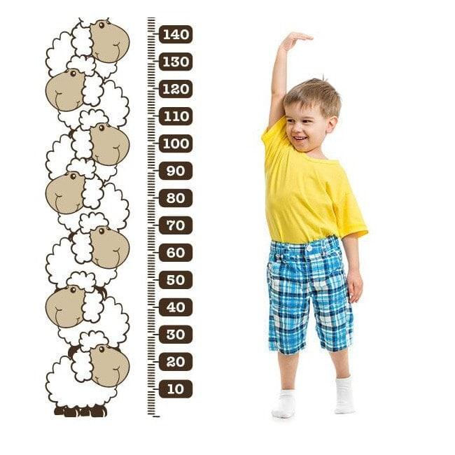 Decorative vinyl meter stature children's sheep