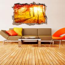 3D vinyl hole wall trees autumn