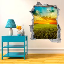 Vinyl 3D wall sunset in the field