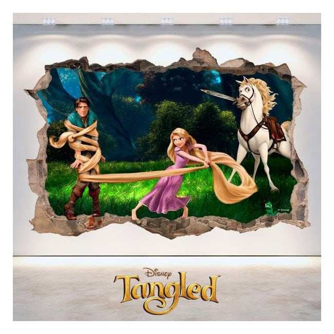 Tangled Disney vinyl hole 3D wall
