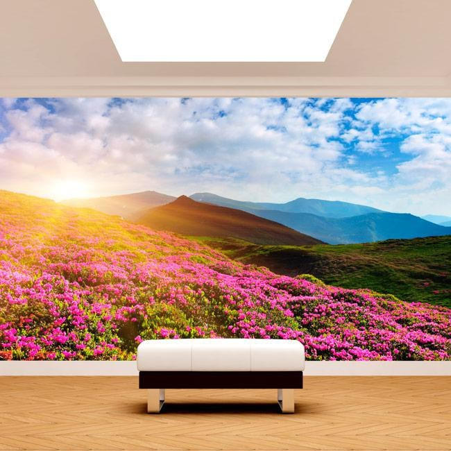 Photo wall murals flowers in the mountains
