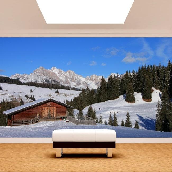 Photo wall murals mountains Siusi Alps Italy