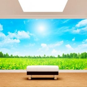 Photo wall murals flowers nature