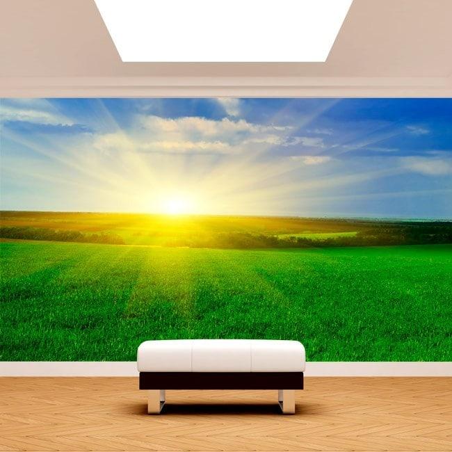 Photo wall murals Sun on the horizon