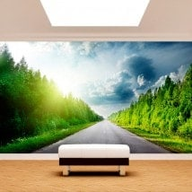 Photo wall murals road and pine