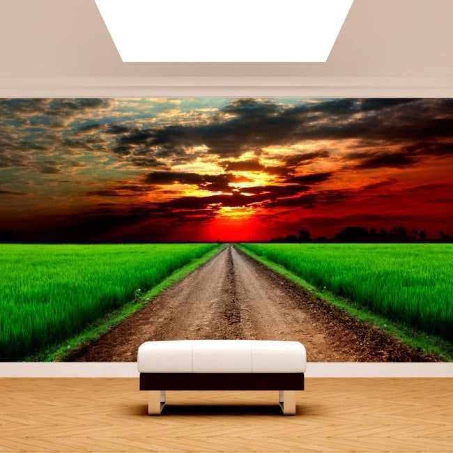 Highway photo wall murals in the field