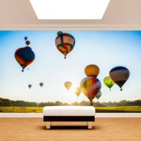Photo wall murals balloons hot air
