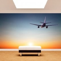 Airplane photo wall murals sunset