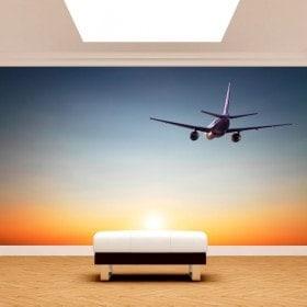 Photo wall murals plane sunset