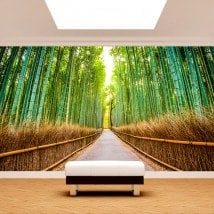 Photo wall murals road and bamboos