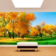 Photo wall murals in the field trees