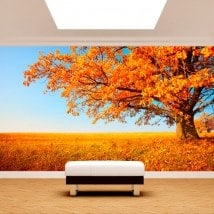 Photo wall murals tree fall