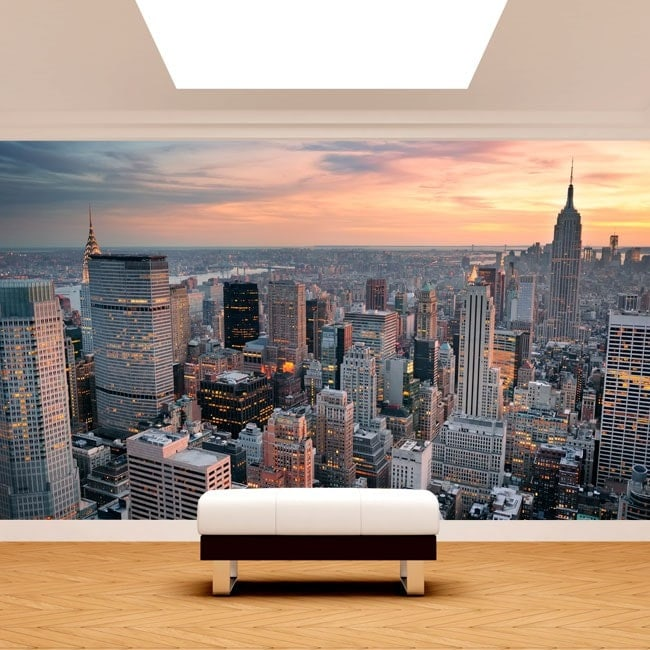 Photo wall murals New York City