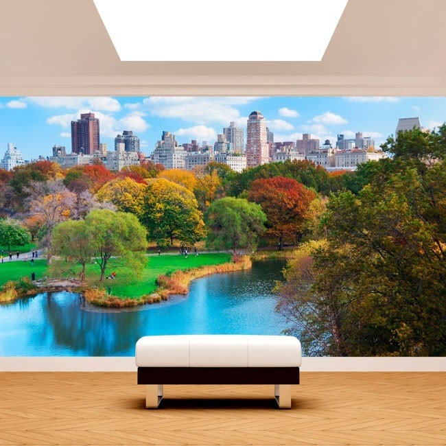 Photo wall murals Central Park New York