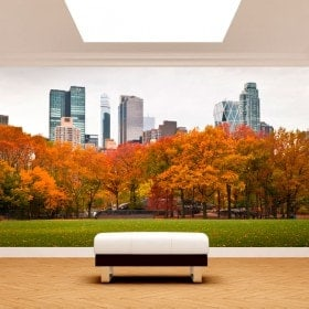 Photo wall murals wall Central Park New York