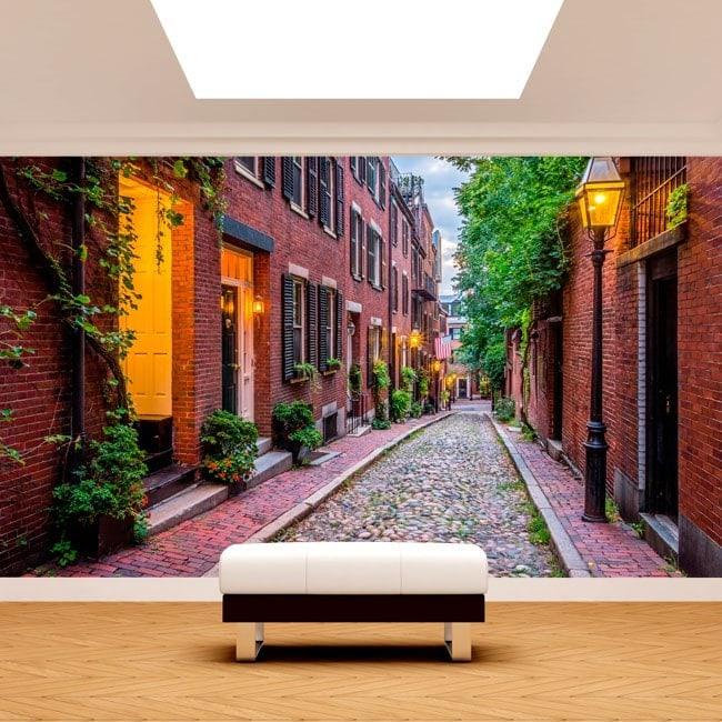 Photo wall murals Boston streets