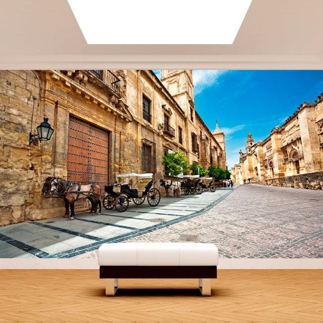 Photo wall murals Cordoba city