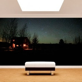 Photo wall murals cabin in the nature