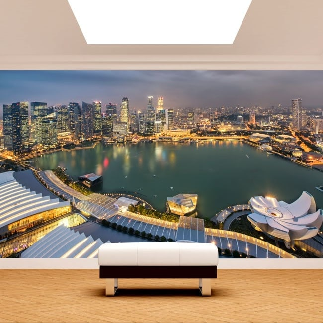 Singapore photo wall murals