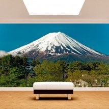Mt.Fuji Photo wall murals