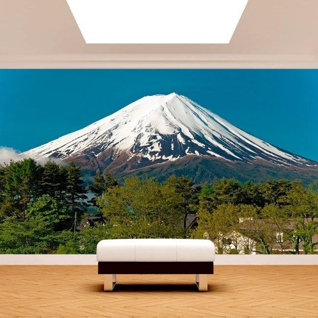 Mt.Fuji Photo wall murals