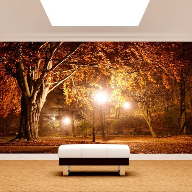 Photo wall murals trees in the Park