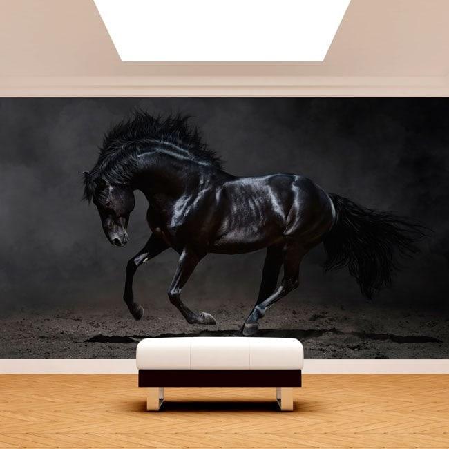 Fotomural black horse