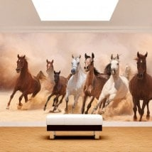 Photo wall murals stampede of horses