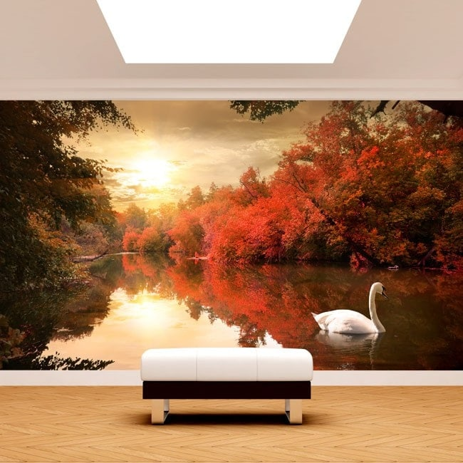 Photo wall murals Swan Lake