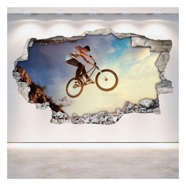 Vinyl hole wall 3D BMX