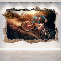 3D Mountain Bike vinyl