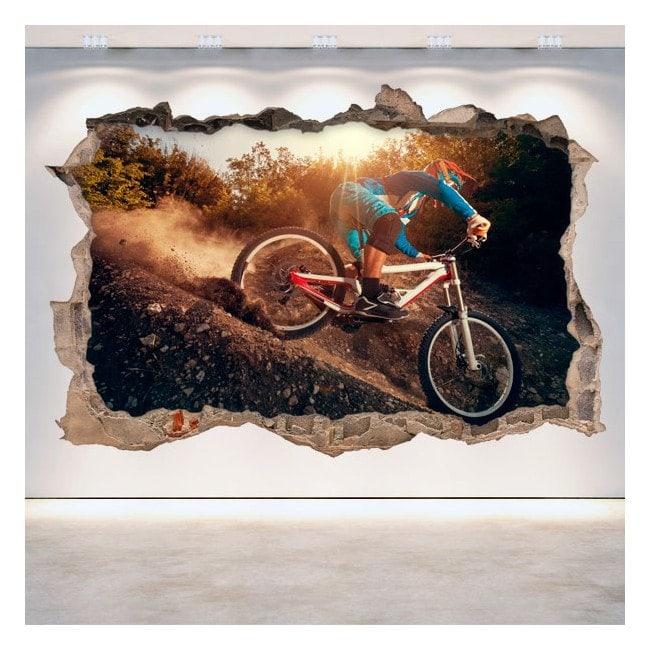 3D Mountain Bike vinyl