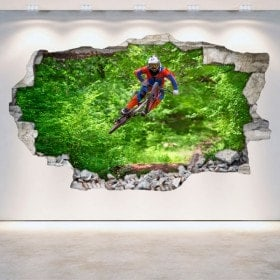 3D Mountain Bike vinyl hole wall