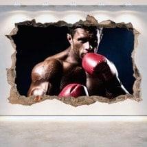 Vinyl 3D boxing