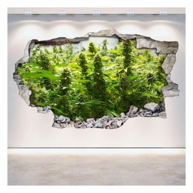 Vinyl Cannabis broken 3D wall