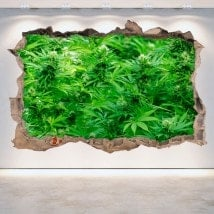 Vinyl wall-broken marijuana 3D
