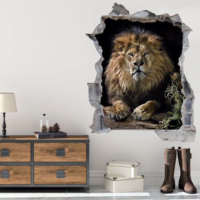 Vinyl 3D lion hole wall