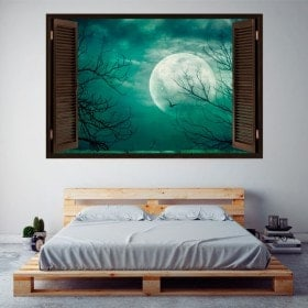 Windows in vinyl full moon 3D