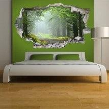 Vinyl 3D walls road and nature