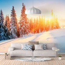 Snowy Mountain photo wall murals