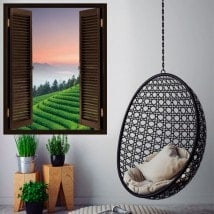 Windows in vinyl 3D plantation tea