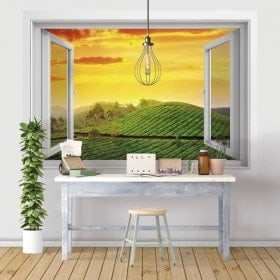 Windows in vinyl 3D India sunset in the field