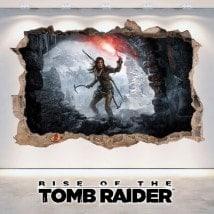 Rise Of The Tomb Raider 3D decorative vinyl