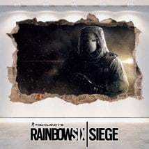 Vinyl 3D Tom Clancy's Rainbow Six Siege