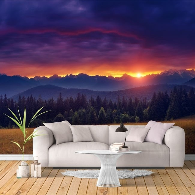 Nature sunset photo wall murals